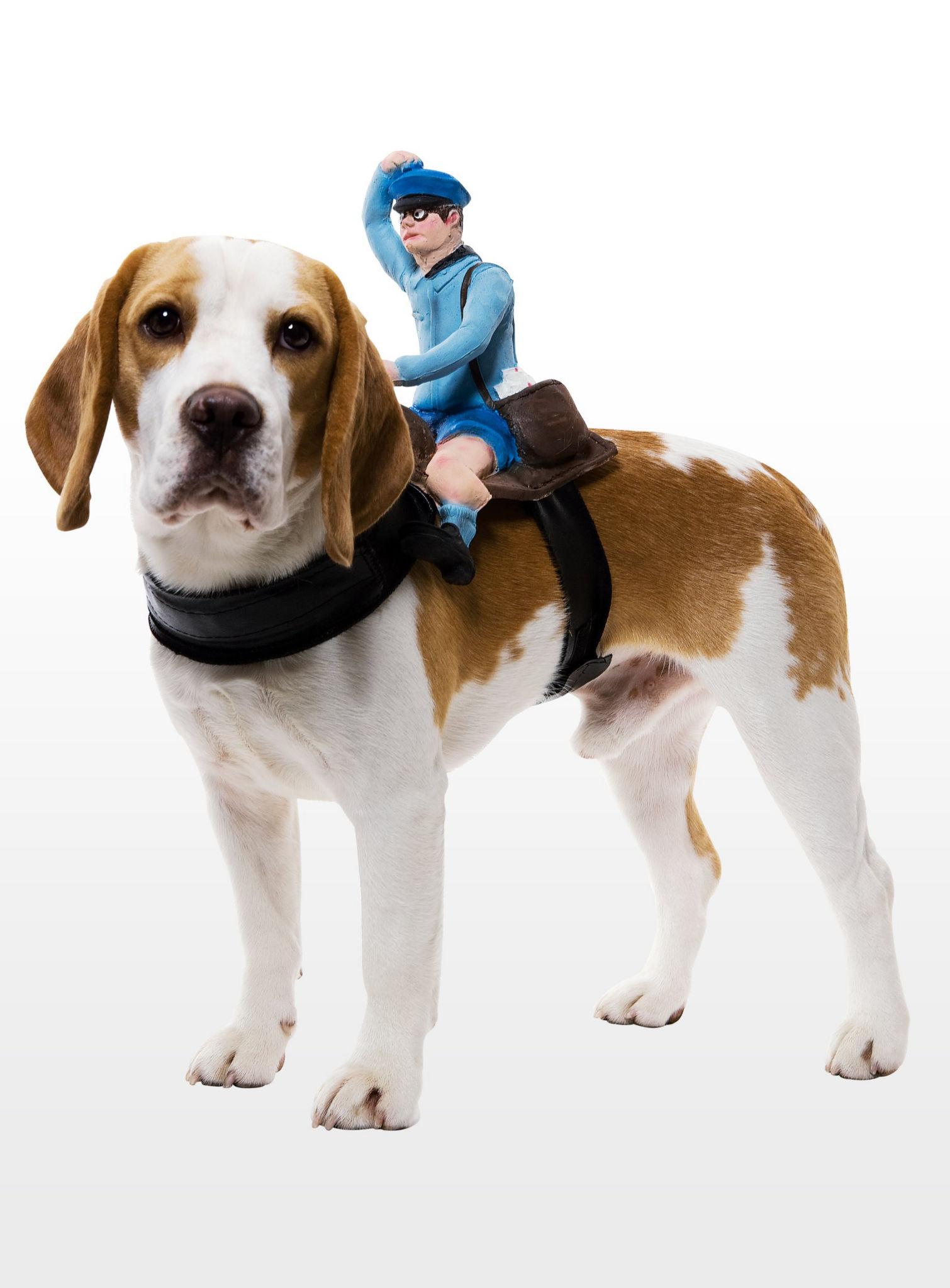 dog rider postbote hundekost m karneval fasching kost m. Black Bedroom Furniture Sets. Home Design Ideas