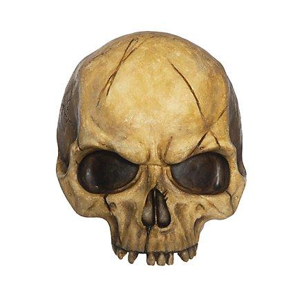 Demi-crâne décoratif en résine (abîmé)