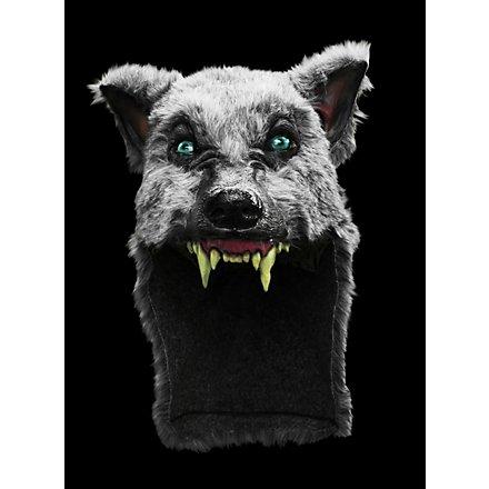 Grauer Wolf Kopfbedeckung
