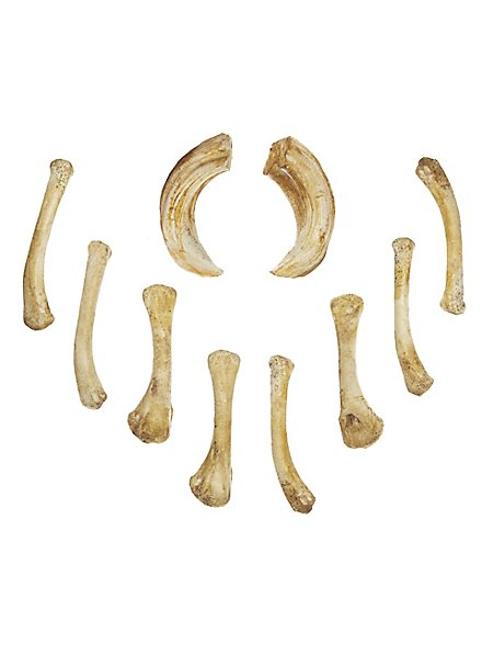 Knochenset aus Gießharz - Wahrsager (10 Stk.)