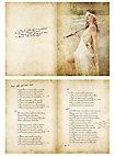 Versengold Liederbuch Band II