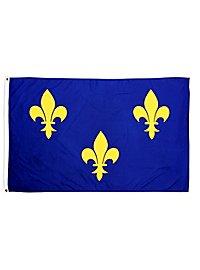 France Fleur de Lys Flag