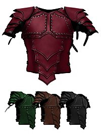 Leather Armour with shoulders - Dragon Rider