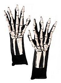 Mains de squelette blanches