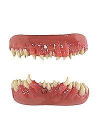 Teeth FX Dents terrifiantes