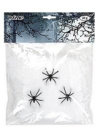 Toiles d'araignée