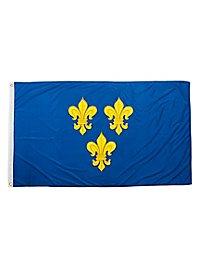 Triple Fleur de Lis Flag