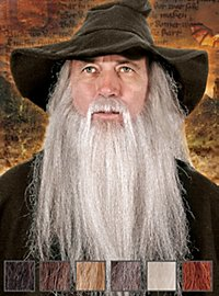 Wizard Professional Beard