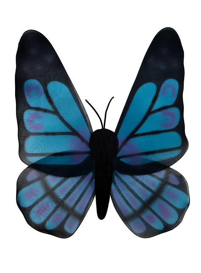 Ailes de papillon noires et turquoise