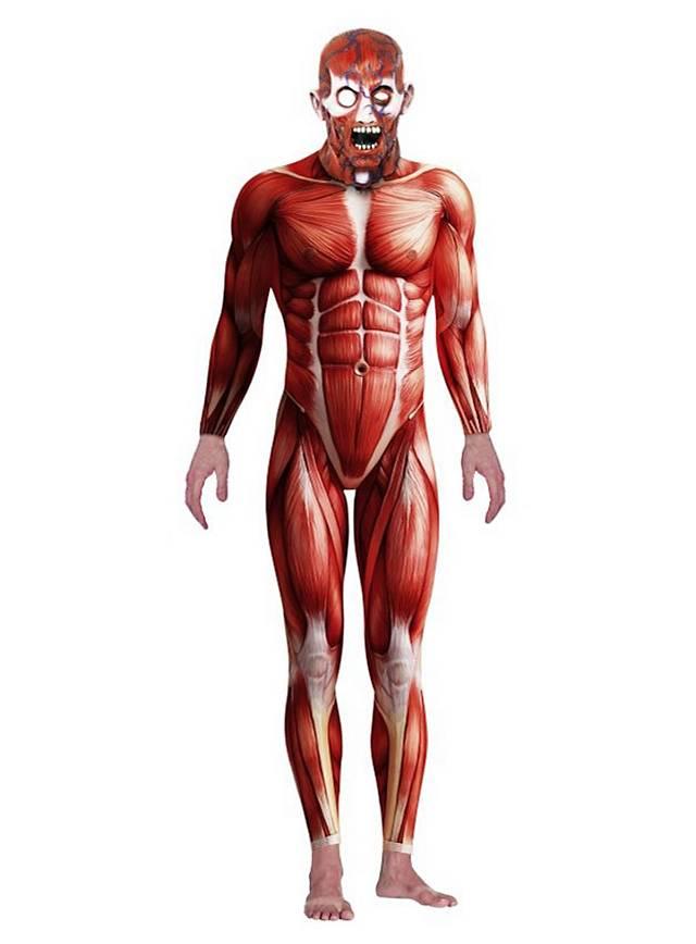 Anatomie Kostüm - maskworld.com