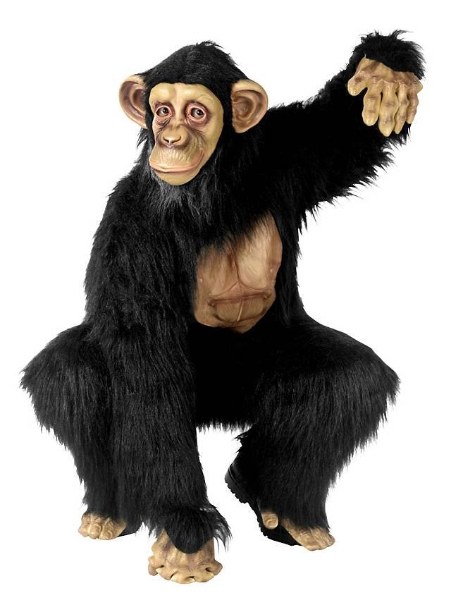 Chimpanzé Déguisement
