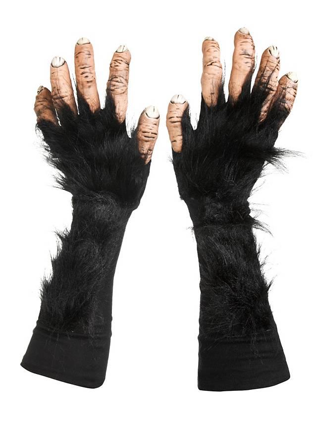 Chimpanzee Hands