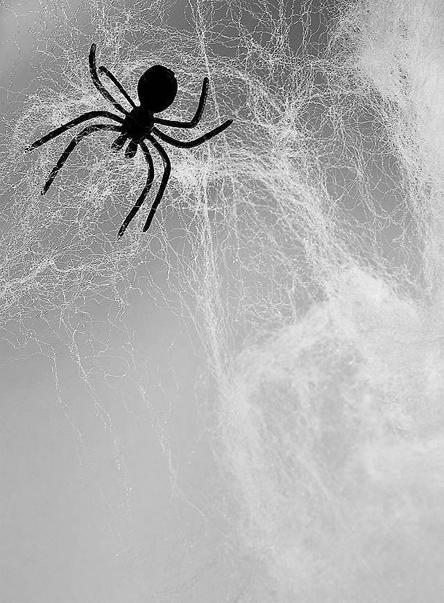 Décoration toile d'araignée 240 g