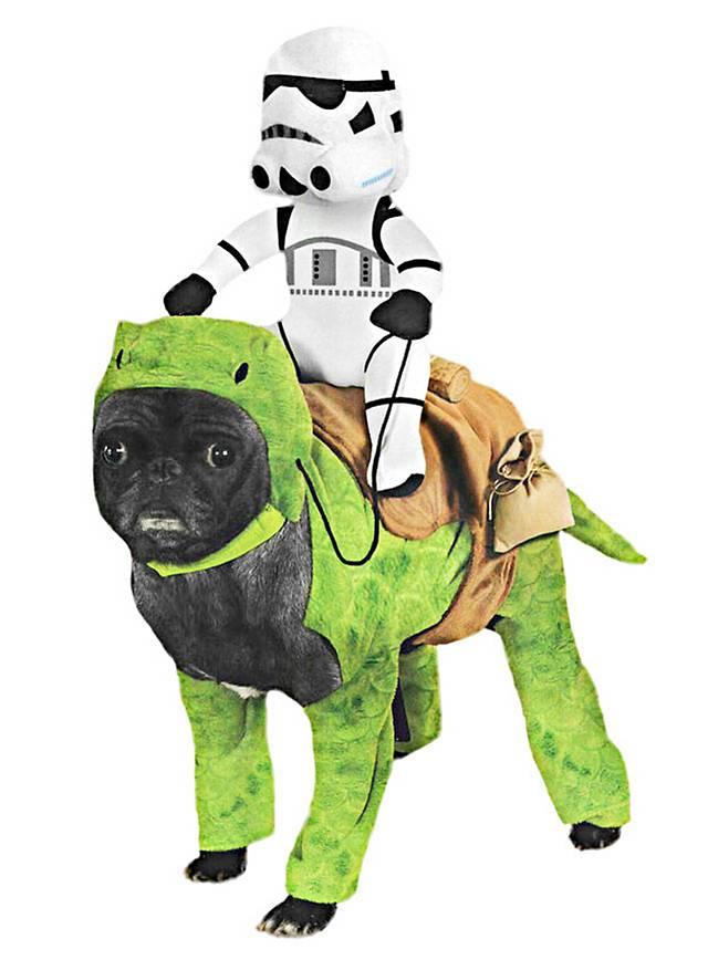 D guisement dewback et stormtrooper star wars pour chien - Deguisement halloween chien ...