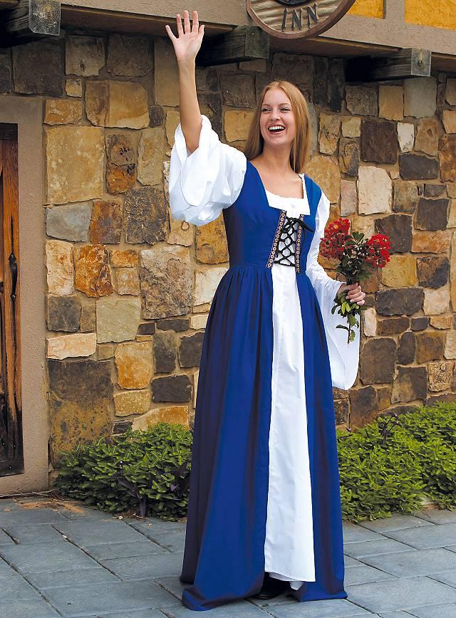 Maid blue Costume