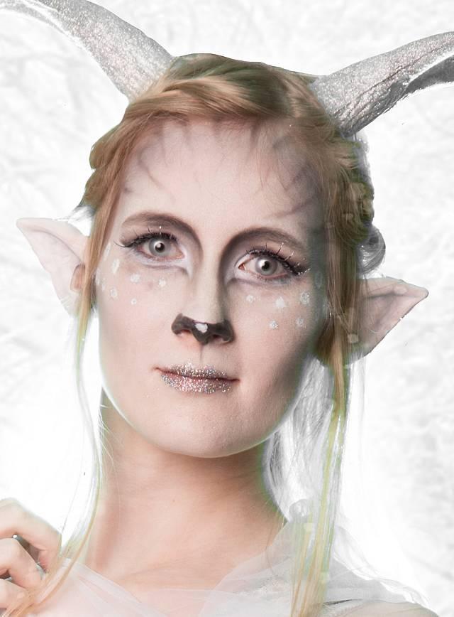 Make Up Set Reh Silber Karneval Schminkset Maskworld Com