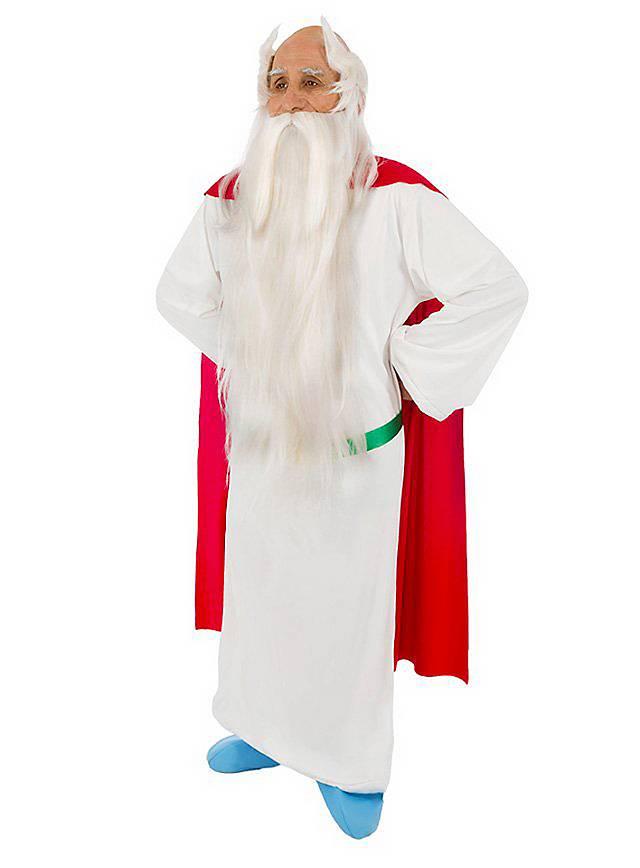 Miraculix Kostüm