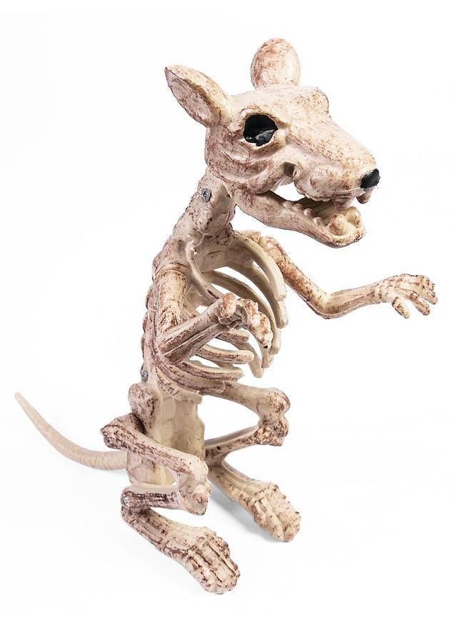 Rattenskelett Halloween Deko