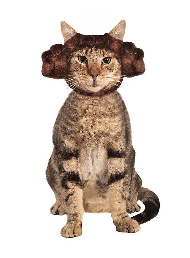 Star Wars Prinzessin Leia Haarreif Für Katzen Maskworldcom