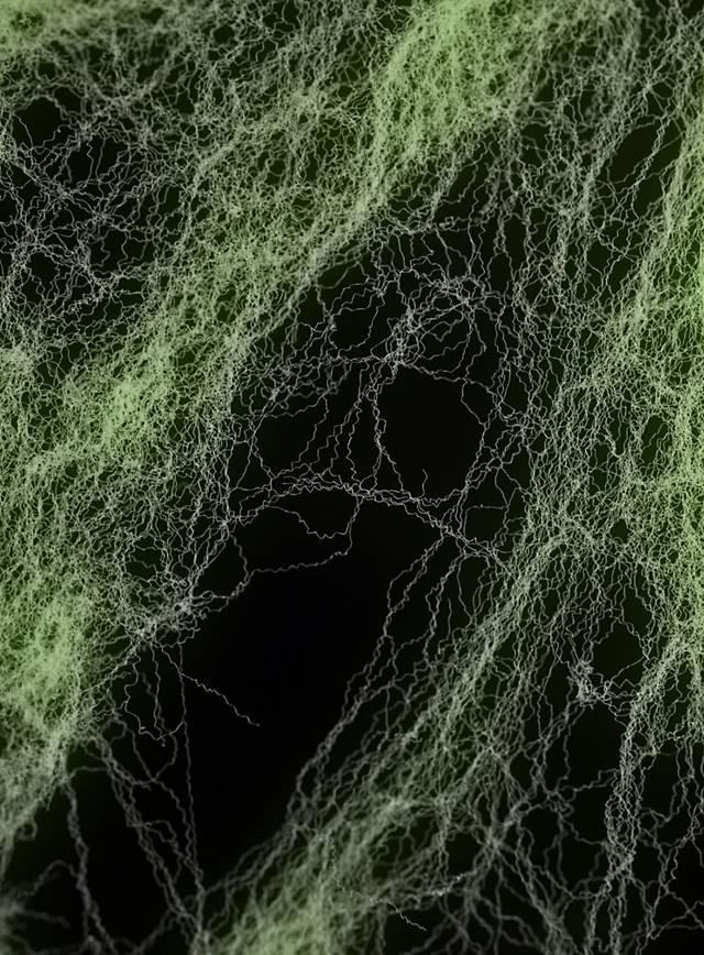 Super Stretchy Spider Web
