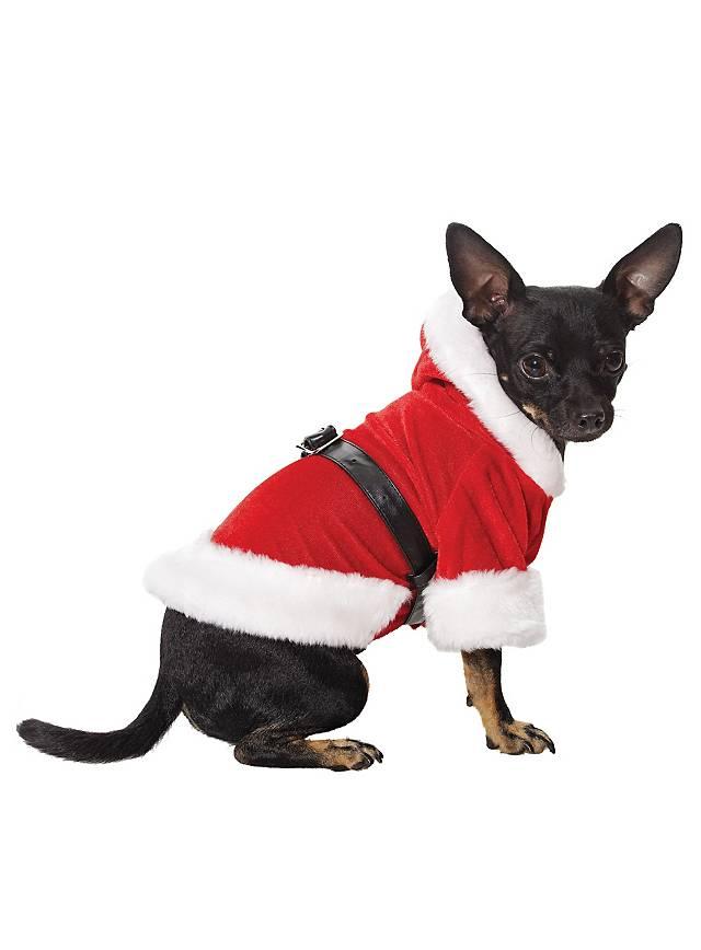 Weihnachtshund Kostüm - maskworld.com