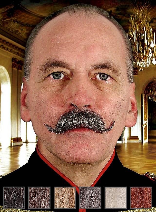 Wilhelm Moustache professionnelle en poils véritables