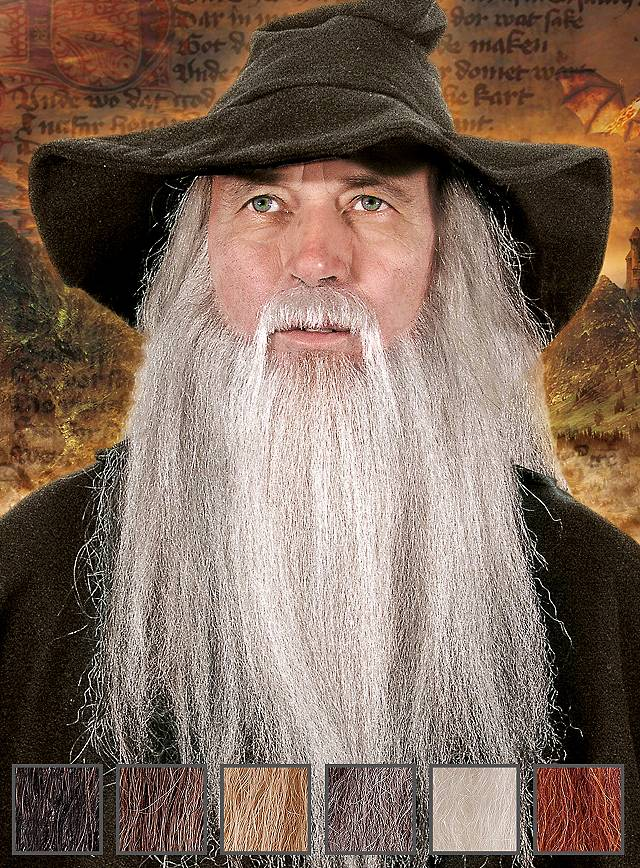 Wizard Professional Beard Maskworld Com