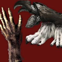 Monsterhände & Füße