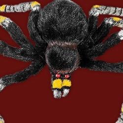 Halloween Deko Kaufen.Halloween Deko Halloween Party Deko Fur Die Gruselparty Jetzt Online Kaufen Maskworld Com