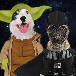 Star Wars Kostüme für Hunde und Katzen