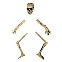 Skelett Halloween Gartendeko