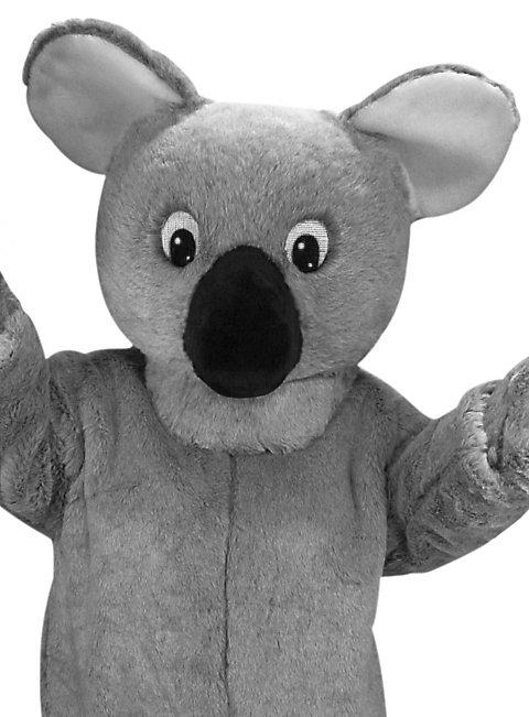 Koalabär Maskottchen