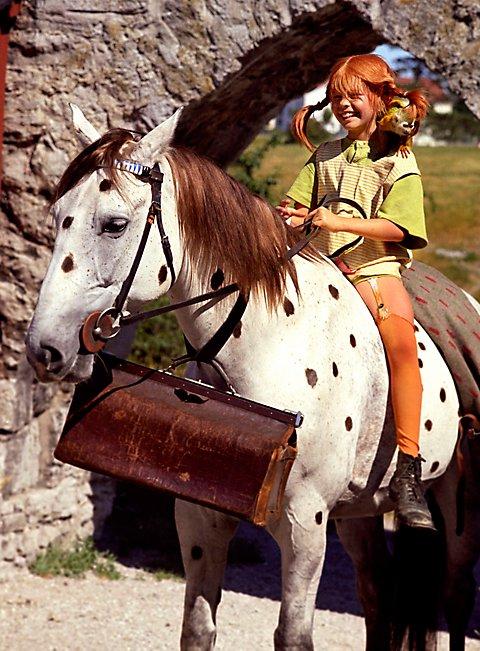 Pippi Langstrumpf Villa Kunterbunt Pferd Und Affe