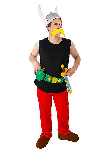 Asterix Costume