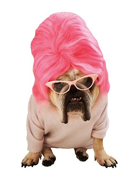 Beehive Dog Costume