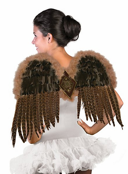 Birds of prey wings with feathers