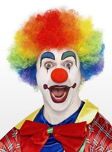 Clown regenbogenfarben Perücke