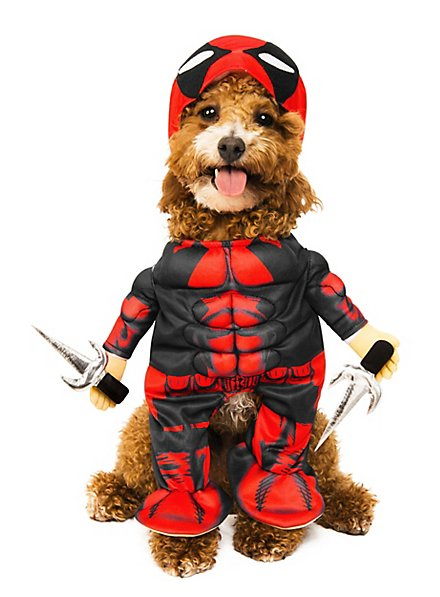 Deadpool Hundekostüm