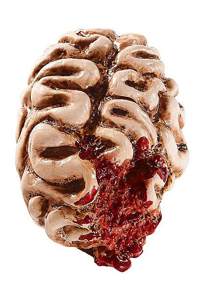 Décoration d'Halloween Cervelle croquée