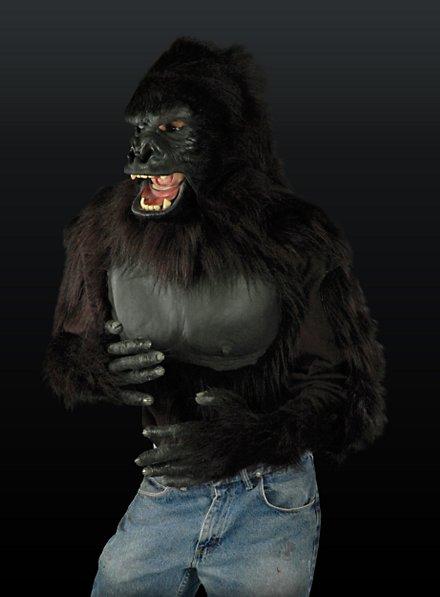 Gorilla Oberkörper