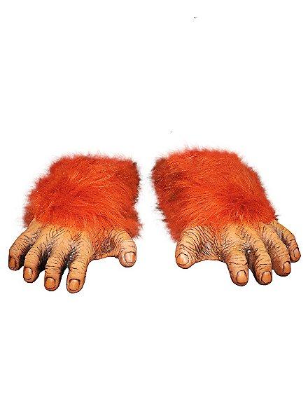 Pieds d'orang-outan
