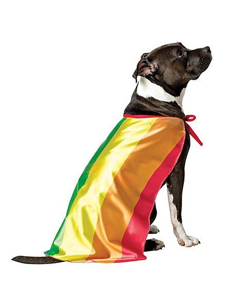 Rainbow flag dog costume