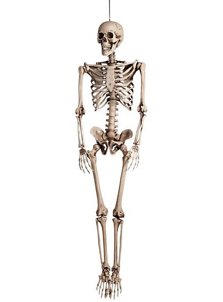 Skelett Hängedekoration