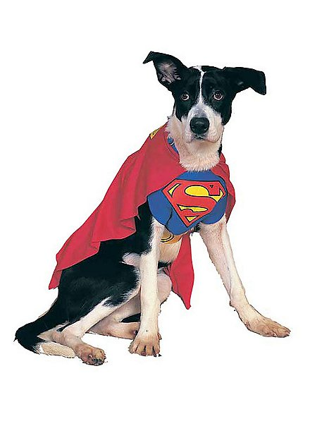 Superman Hundekostüm