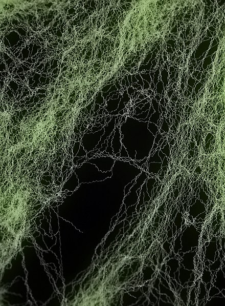 Toile d'araignée luminescente extensible