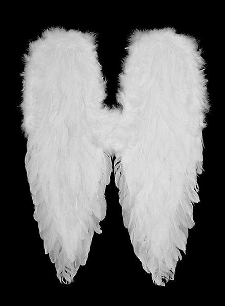Weiße Flügel Federn