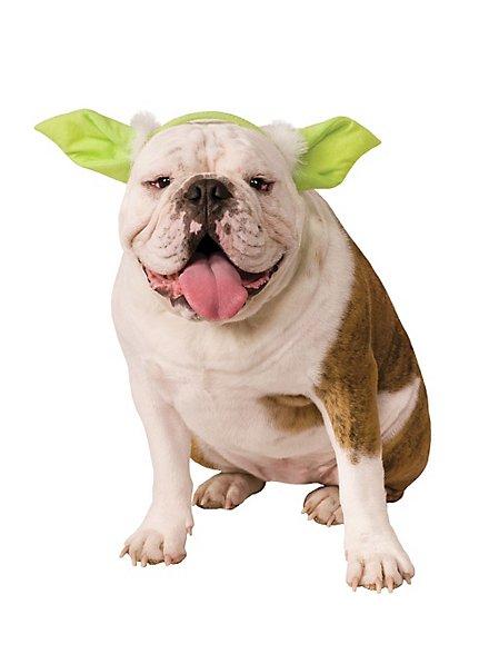 Yoda Haarreif für Hunde