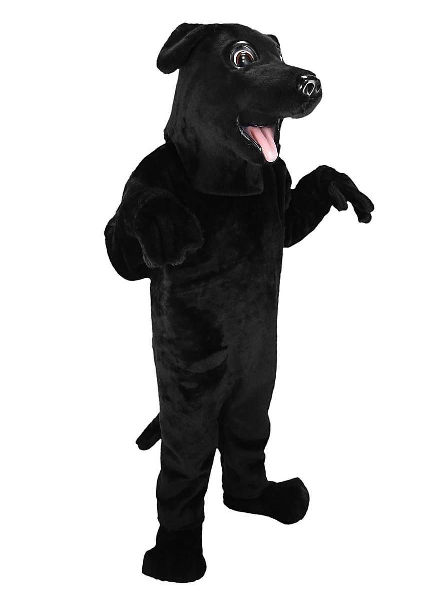 Black Labrador Retriever Mascot Maskworld Com