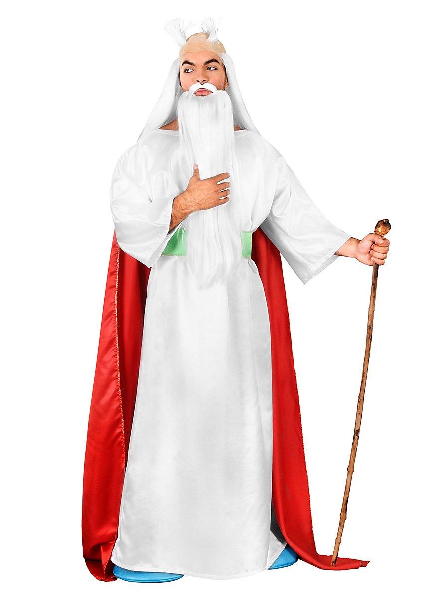 Druid Halloween Costume
