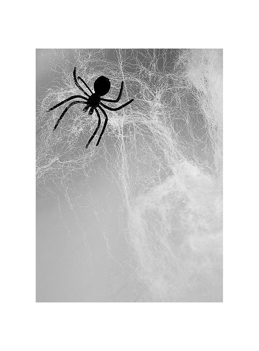 Spider Web Decoration 240 g - maskworld.com